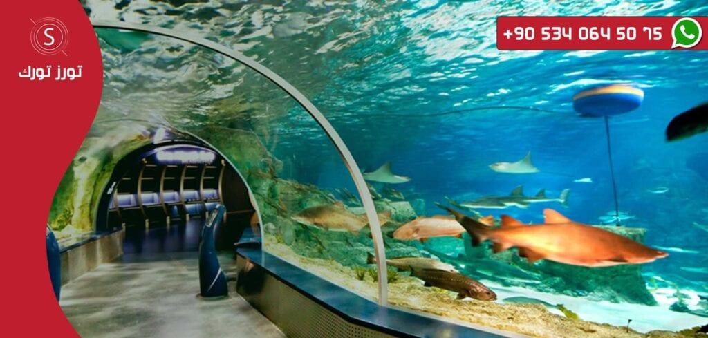 اماكن سياحية في اسطنبول اساحل اكواريوم