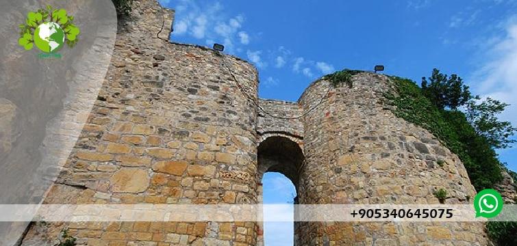قلعة جراسون