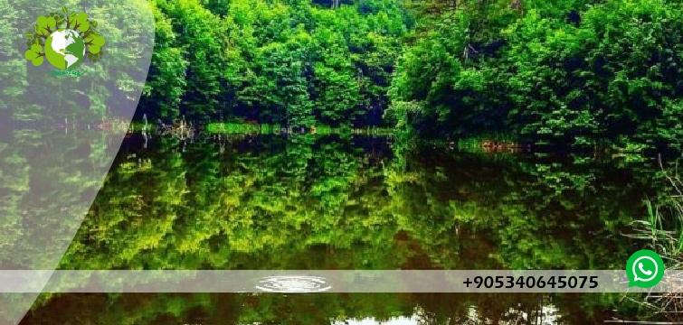 بحيرة السد جولة يلوا
