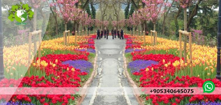 جولة حديقة الاميرجان