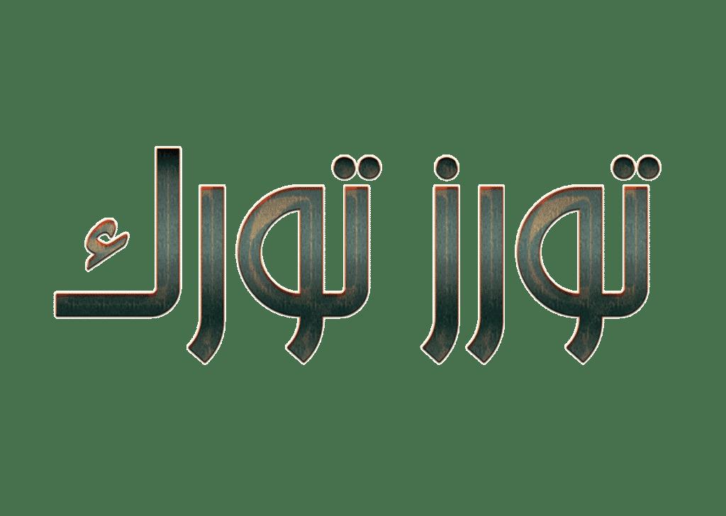 شركة سياحية في طرابزون