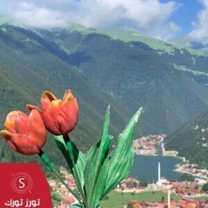 اجمل برامج سياحية في تركيا